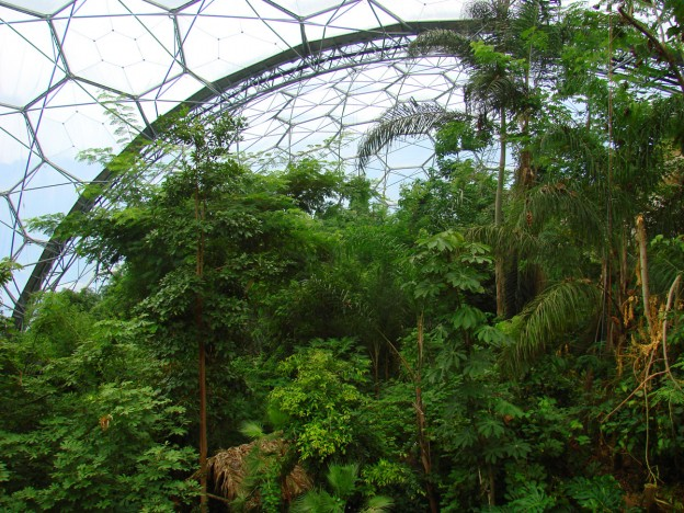 Eden Project Biome